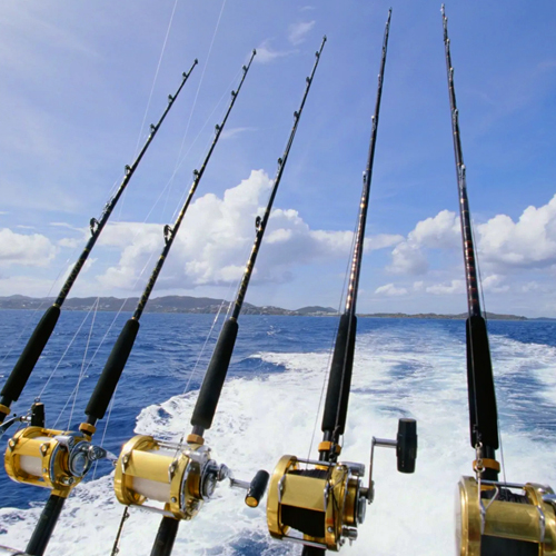 Rods and Reels_500x500